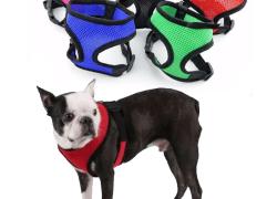 Harnais pour petit chien, souple et respirable