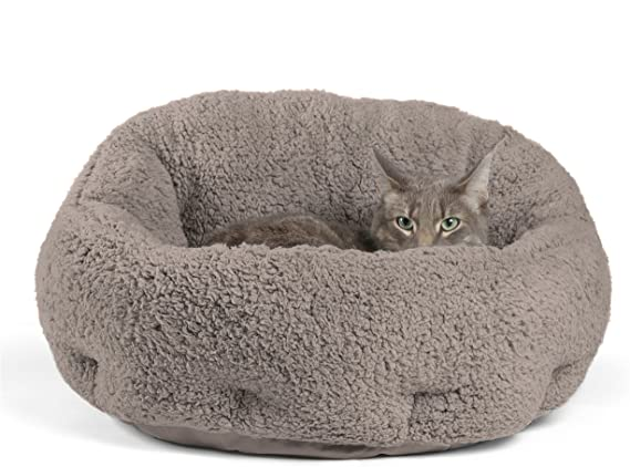 The Best Cat Beds and The Best Bed For Outdoor Cat