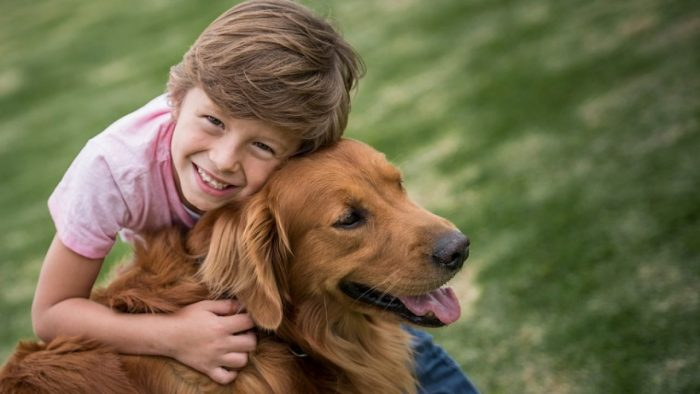 The Best Dog Breeds For Families
