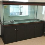 200-Gallon-Glass-Fish-Tank-Reef-Aquarium-with-Filter-System-T8-Lighting-System-and-Cabinet-Stand-for-Fresh-or-Salt-Water-0