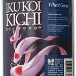 IKU-KOI-KICHI-Wheat-Germ-Koi-Fish-Food-0