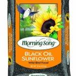 Morning-Song-Black-Oil-Sunflower-0