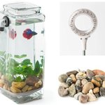 Newest-Version-NoClean-Aquariums-New-GravityFlow-Self-Cleaning-Glass-Betta-Aquarium-Starter-Kit-with-Polished-Stones-and-IllumaFlex-White-LED-The-Original-Self-Cleaning-Aquarium-2nd-Generation-0