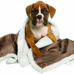 Animal-Planet-Sherpa-Pet-Blanket-Pewter-0