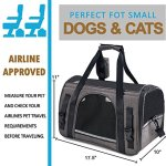 Airline-Approved-Soft-Sided-Pet-Travel-Carrier-with-Mesh-Windows-and-Cushion-Free-Bonus-Poop-Bag-Dispenser-for-Small-Dogs-and-Cats-0-2