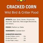 Audubon-Park-12223-Cracked-Corn-Wild-Bird-and-Critter-Food-5-Pounds-0-0