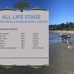 Blackwood-Pet-Food-All-Life-Stages-Special-Diet-Sensitive-Skin-0-1