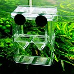 MundoPet-Aquarium-Breeding-Hatchery-Incubator-Isolation-Box-Tank-for-Fish-Breeder-0-2