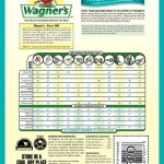 Wagners-Southern-Regional-Birdseed-Mix-0-0