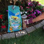 Wagners-Southern-Regional-Birdseed-Mix-0-2