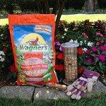 Wagners-Southwestern-Regional-Birdseed-Mix-0-2