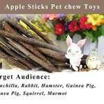 250g-and-500g-Natural-Apple-Sticks-Small-Animals-Molar-Wood-Treats-Toys-Chinchilla-Guinea-Pig-Hamster-Rabbit-Gerbil-Parrot-Bunny-and-Small-Animals-Chew-Stick-Toys-Treats-0-2