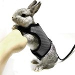 ASOCEA-Adjustable-Soft-Harness-with-Stretchy-Leash-for-Bunny-Cat-0-1