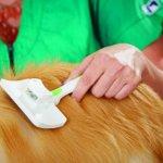 Andis-Pet-Self-Cleaning-Animal-Slicker-Brush-40160-0-2