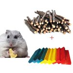 BWOGUE-Hamster-Chew-Sticks100G-Natural-Apple-Branch-24pcs-Colored-Wood-Chews-Sticks-Molar-Teeth-Toy-for-Small-Pets-Chew-Treat-0