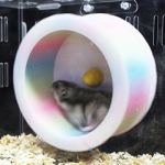 Best-Quality-Cages-Petforu-Hamster-Mouse-Slient-Running-Roller-Pet-Exercise-Sport-Jogging-Wheel-by-VietFA-1-PCs-0-2