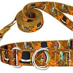 Country-Brook-Design-Martingale-Collar-Leash-Awesome-Autumn-Collection-0