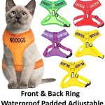 Dexil-Color-Coded-Cat-Harness-Warning-Alert-Vest-Padded-and-Water-Resistant-Let-Others-Know-Your-Cat-in-Advance-0-0