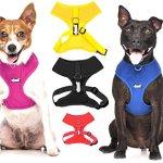 Dexil-Elite-Range-Luxury-Neoprene-Padded-Extra-Strong-Adjustable-S-M-L-XL-XXL-Pet-Dog-Collars-0-1