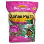 Kaylor-made-Sweet-Harvest-Guinea-Pig-More-0