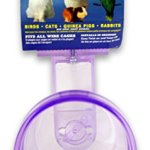 Lixit-Corporation-SLX0510-Critter-Brites-Small-Animal-Quick-Lock-Crock-10-Ounce-Colors-Vary-0