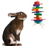 Medium-Crazy-Color-Rabbit-Chew-Toy-0
