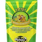 Pangea-BananaPapaya-Fruit-Mix-Complete-Crested-Gecko-Food-1-lb-0
