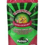 Pangea-Fruit-Mix-Watermelon-Complete-Gecko-Diet-12-LB-0