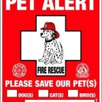 Pet-Rescue-Accessories-Kit-For-All-Pets–Choice-of-Sets-Include-Pet-Emergency-Care-Cards-Safety-Alert-Decals-My-Pet-is-Home-Alone-Keychain-Essential-Supplies-Gifts-for-all-Owners-Lovers-Sitters-Daycar-0