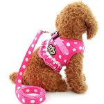 SELMAI-Puppy-Cat-Small-Girl-Dog-Dots-Vest-Harness-Leash-Set-Mesh-Padded-No-Pull-Lead-Size-Run-SmallPlease-Check-Size-Details-Carefully-Before-Purchase-0