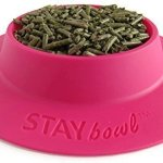 STAYbowl-Tip-Proof-Bowl-for-Guinea-Pigs-and-Other-Small-Pets-Fuchsia-Pink-Large-34-Cup-Size-New-0-1