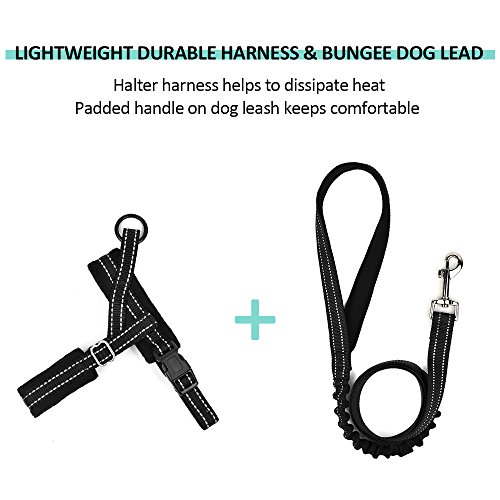 SlowTon No Pull Small Dog Harness and Leash, Heavy Duty
