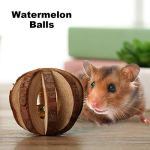 Soeenaper-Guinea-Pig-Toys-Chinchilla-Hamster-Rat-Chews-Toys-Bunny-Supplies-and-Toys-Rabbit-Teeth-Grinder-Bunny-Chew-Toys-for-Rabbits-Hamster-Gerbil-Style-1-0-0
