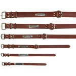 Soft-Leather-Padded-Custom-Dog-Collar-and-Leash-Set-with-Personalized-Engraved-NameplateFit-Small-Medium-Large-Dogs-0-1