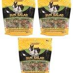 Sun-Seed-Vitakraft-Vita-Prima-Sun-Salad-Treat-for-Rabbits-Pack-of-3-0