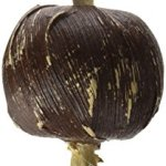 Ware-Manufacturing-Natural-Bark-N-Sisal-Ball-Chew-Toy-for-Small-Pets-0