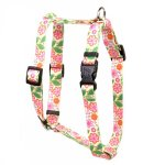 Yellow-Dog-Design-Flower-Patch-Roman-Style-Dog-Harness-0