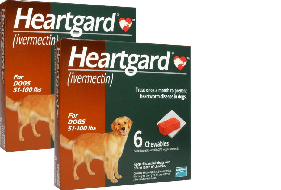 Review Heartgard Plus For Dogs 51 100 Lbs petswithloveus