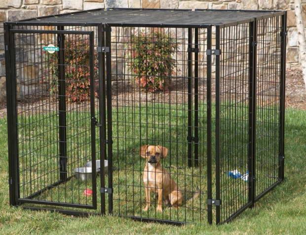 Lowes Dog Kennels