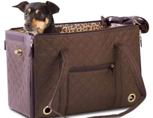 Medium Sized Dog Carrier