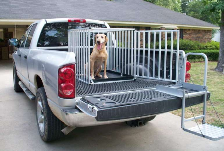 Truck Bed Dog Crate