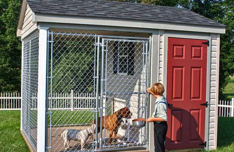 Outside Dog Kennels