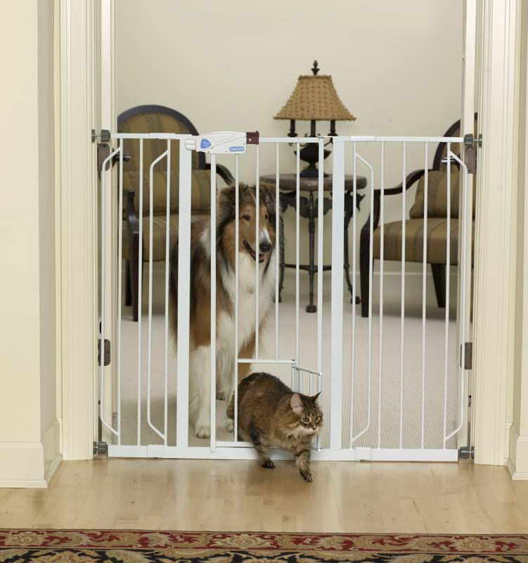 Amazon Dog Gate