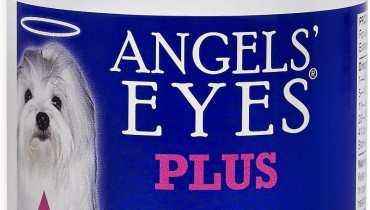 Angel Eyes Dogs