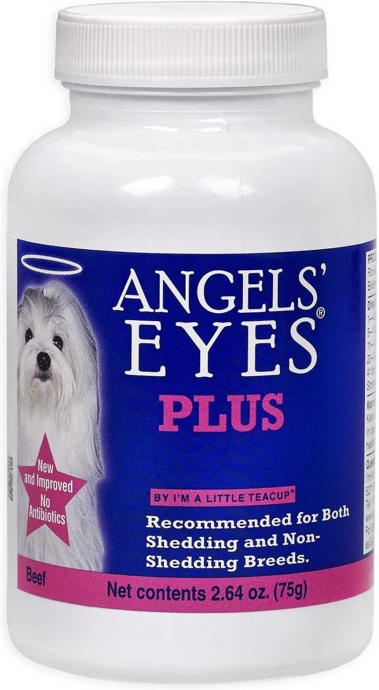 Angel Eyes Dogs