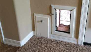 Dog Doors For Walls