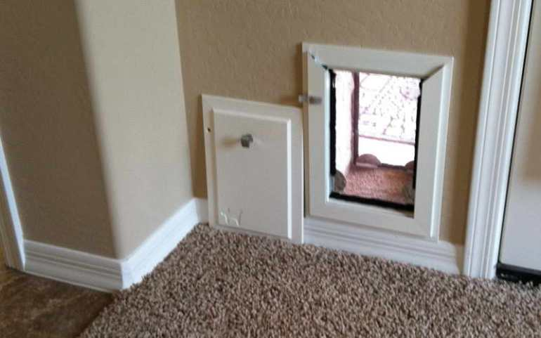Dog Doors For Walls