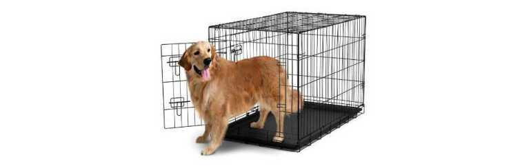 Xxxl Dog Crate