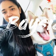 Best Dog Boarding in Bayside, NY  Rover