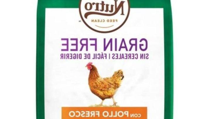 Grain Free Dog Food 5kg
